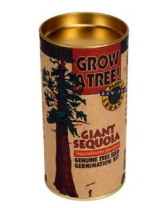 Giant Sequoia Tree Kit