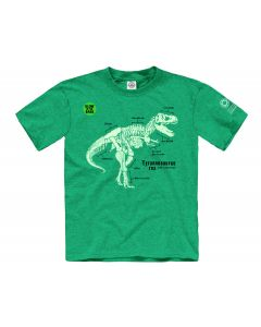 Boys Glow-in-the-Dark T. Rex Tee
