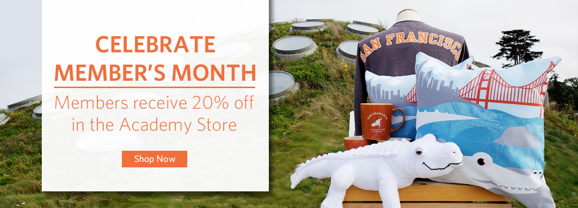 Member Appreciation Month 20% Off